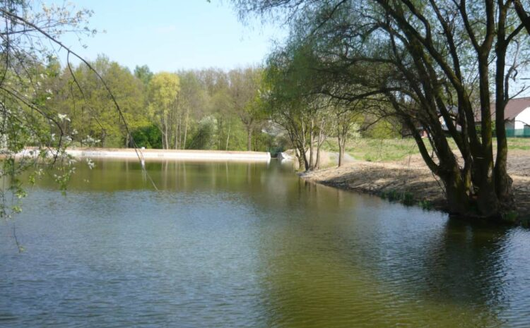 Komárovský rybník v Průhonicích po rekonstrukci a odbahnění